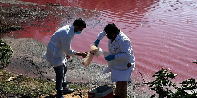 Marcelo Coronel, left, and Francisco Ferreira, technicians from the National University Multidisciplinary Lab, take samples from the Cerro Lagoon where the water is colored in Limpio, Paraguay, on Wednesday. (AP Photo/Jorge Saenz)